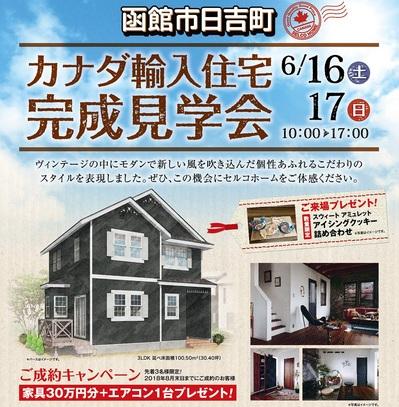 1806_hiyoshi-01 - コピー - コピー.jpg