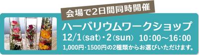 201812_ueno_05.jpg