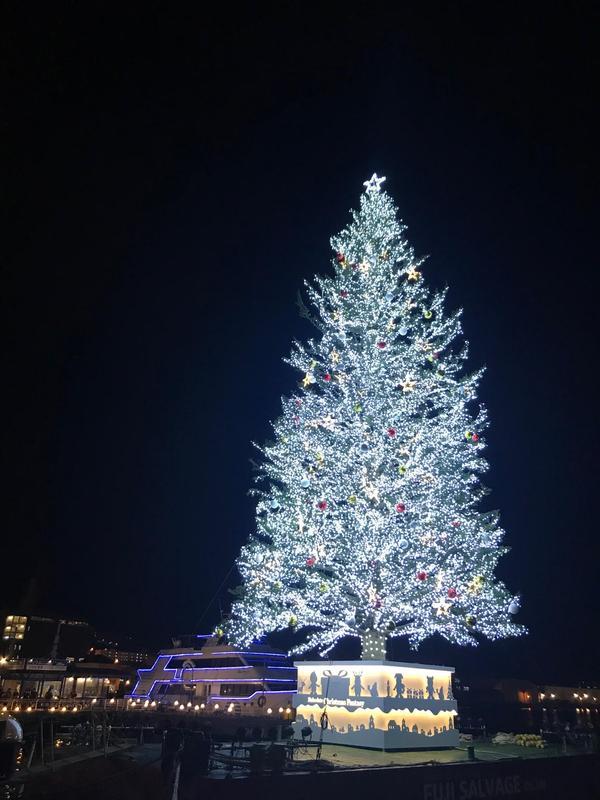 おうちクリスマス♪